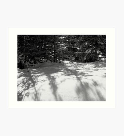Snowbank 2 Art Print