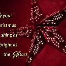 Christmas Star by Tori Snow