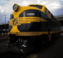 S 303 by MDC DiGi PiCS