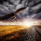 Down The Track by Cliff Vestergaard