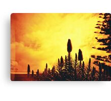 Redscale Silhouette Canvas Print