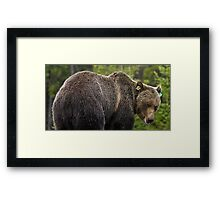 Laugh at my butt and see what happens. Framed Print