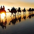 Camel Silhouette by chriso