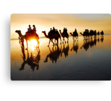 Camel Silhouette Canvas Print