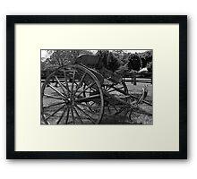 Buggy - NSW Framed Print