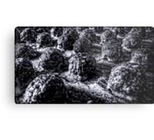 Alien Hatching Pods Metal Print