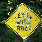 End of the Road Sign by Bryan D. Spellman