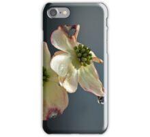 Dogwood Tears iPhone Case/Skin