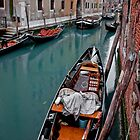 Venice by Peter  Daly