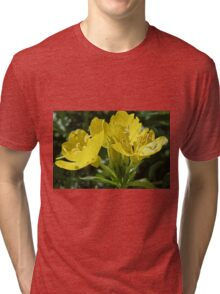 Primrose - Sundrops in the Meadow Tri-blend T-Shirt