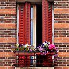 Balcony 2 by MaluC