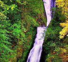 Bridal Veil Falls - Columbia River Gorge, Oregon by John Absher