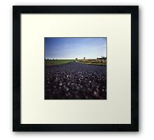 Down Low Framed Print