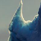 Iceberg by DebYoung