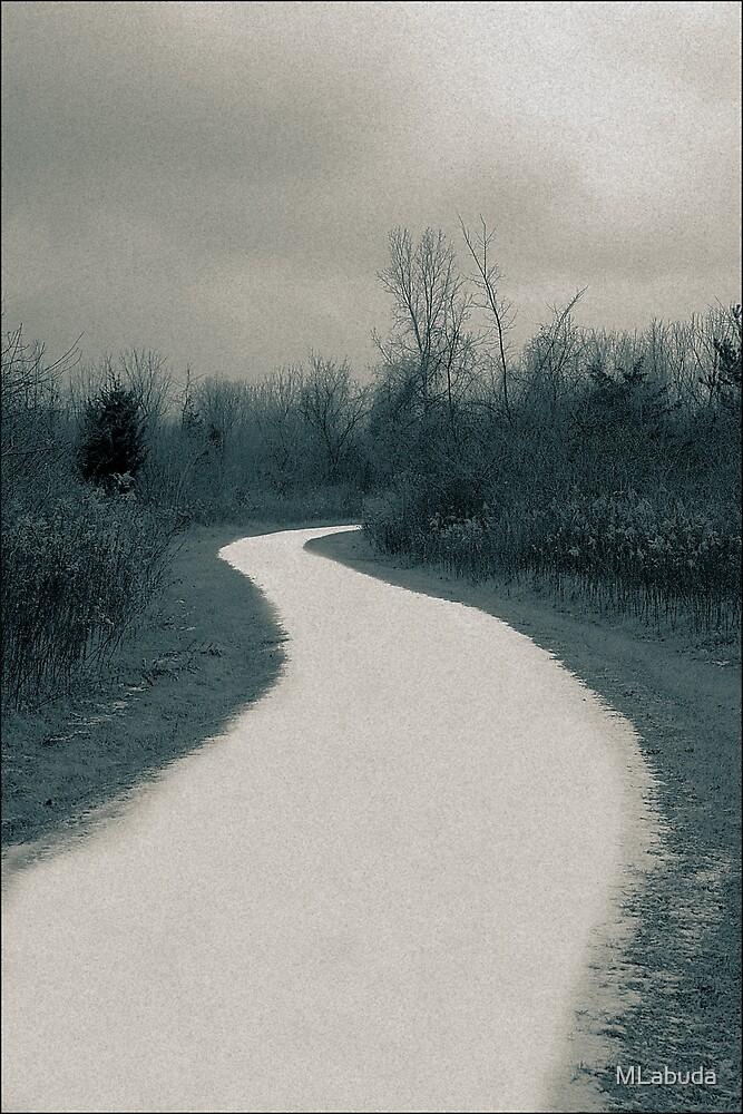 The winter lane  A Split Toned Photograph  by MLabuda