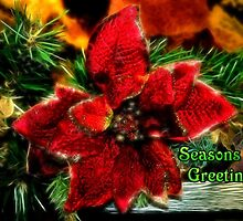 Sparkling Seasons Greetings by missmoneypenny