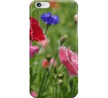 Poppies, As Is iPhone Case/Skin