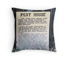 Jail/Pest House......Idaho City, Idaho Throw Pillow