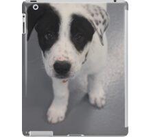 Baby Grant iPad Case/Skin