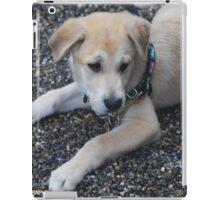 Baby Hewey iPad Case/Skin