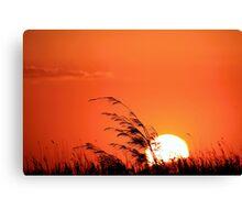 Grass fire - Scarborough Canvas Print