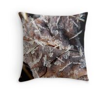 ice crystals on a brown leaf Throw Pillow