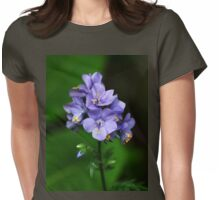 Jacobs Ladder Womens Fitted T-Shirt