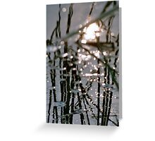 reed 1 Greeting Card