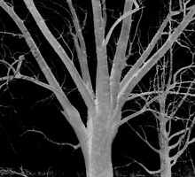 Negative tree by Tony Reed