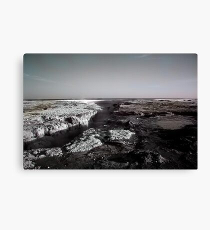 Newcastle Ocean Baths 2 Canvas Print