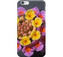 256 Lantana Violet iPhone Case/Skin