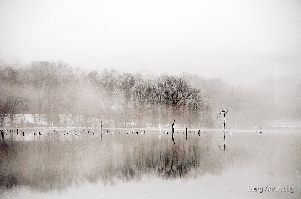 Winter by Mary Ann Reilly