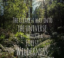 The Clearest way into the Universe is through a Forest Wilderness by Michelle McConnell
