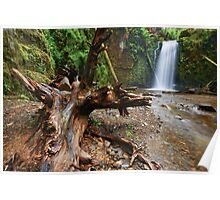 The Enchanting Marriners Falls Poster