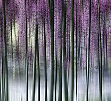 Whispering Pines by Kelly Cavanaugh