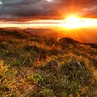 Feathertop sunset by bonsta