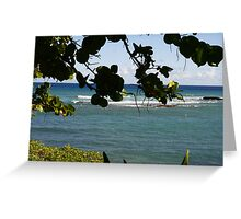 hawaii though the trees Greeting Card