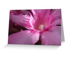 260 Oleander Greeting Card