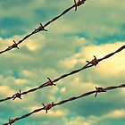 Barbed Wire, Blue Sky - Birmingham, Alabama by Hampton Taylor