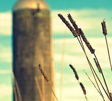 Grain Silo - Alabaster, Alabama by Hampton Taylor