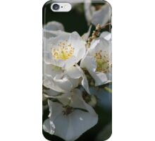 White Blossoms in the Light iPhone Case/Skin