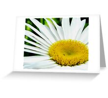 Rememberance of Summer Greeting Card