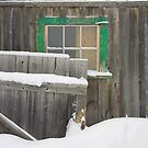 old barn in the snow, Barkerville by Christopher Barton