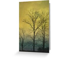 Winter Sky and Tree Silhouette Greeting Card