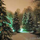 Snowscape by Grace Anthony Zemsky