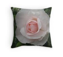 Pink Blossom Rose Throw Pillow