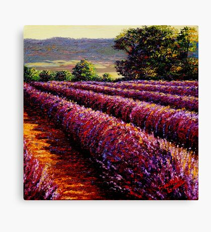 French Provençal Lavender Afternoon Canvas Print
