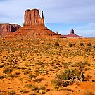 Monument Valley Scene by Nickolay Stanev