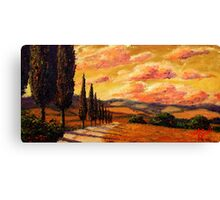 Tuscany Cypress Road Canvas Print