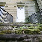moss covered steps by jbiller